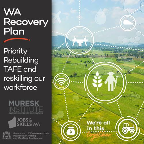 Wheatbelt Recovery Plan